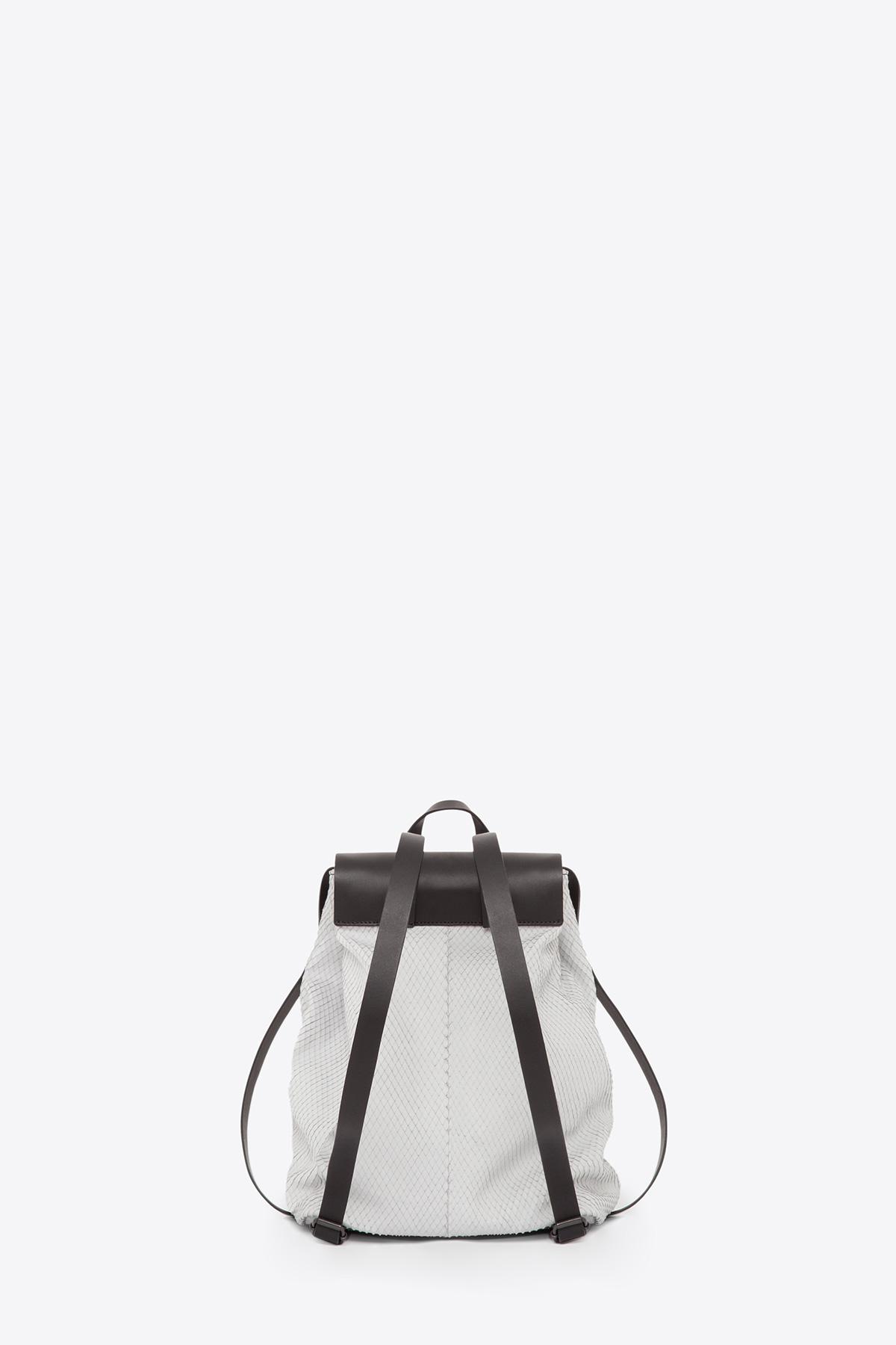 dclr009-b-backpack-a22-backsnakefoggrey-back