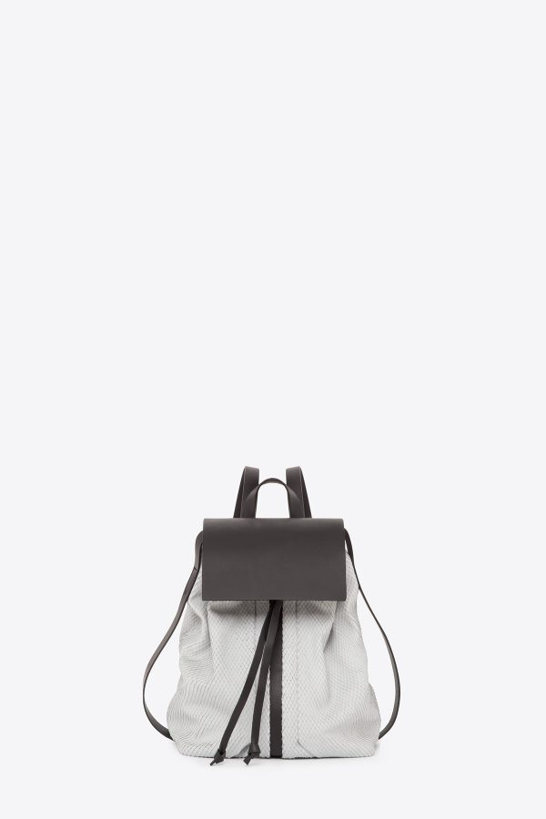 dclr009-b-backpack-a22-backsnakefoggrey-front